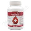 AcePharma AceRutin cps. 60x240mg