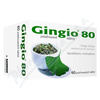 Gingio 80mg tbl. flm. 60x80mg