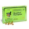 Bioaktivní Pycnogenol tbl. 90