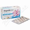 Magnolie forte tbl. 60